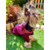 Lila Thermo kutyakabát 5XL méretben